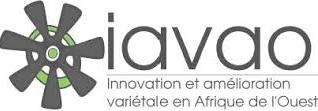 logo_iavao